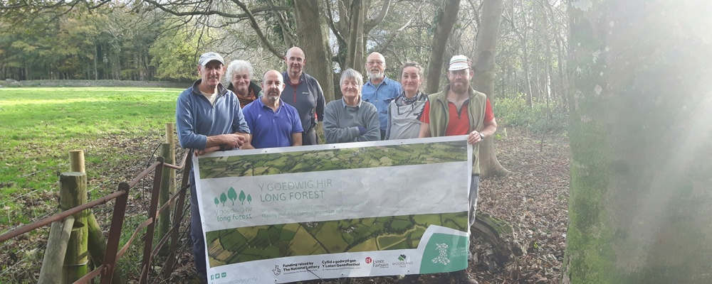 New green corridor for the red squirrels  on Anglesey