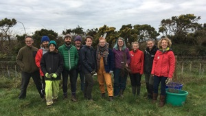 Tir Coed Blog - Tree Planting Volunteering Day